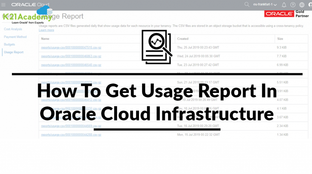 Usage Reports In Oracle Cloud Infrastructure
