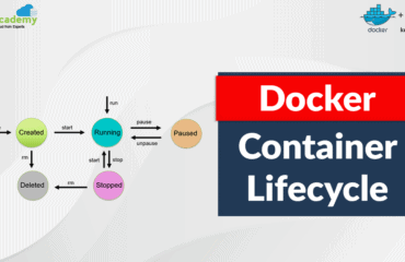 Docker Container Lifecycle Management